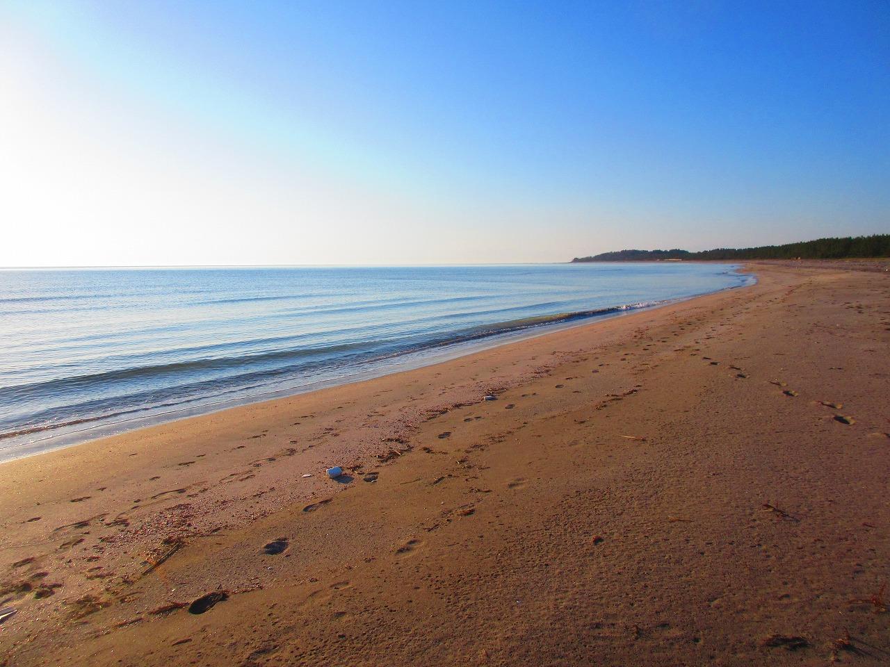 粟津海岸朝の散歩。ルールを決めるのは誰か?