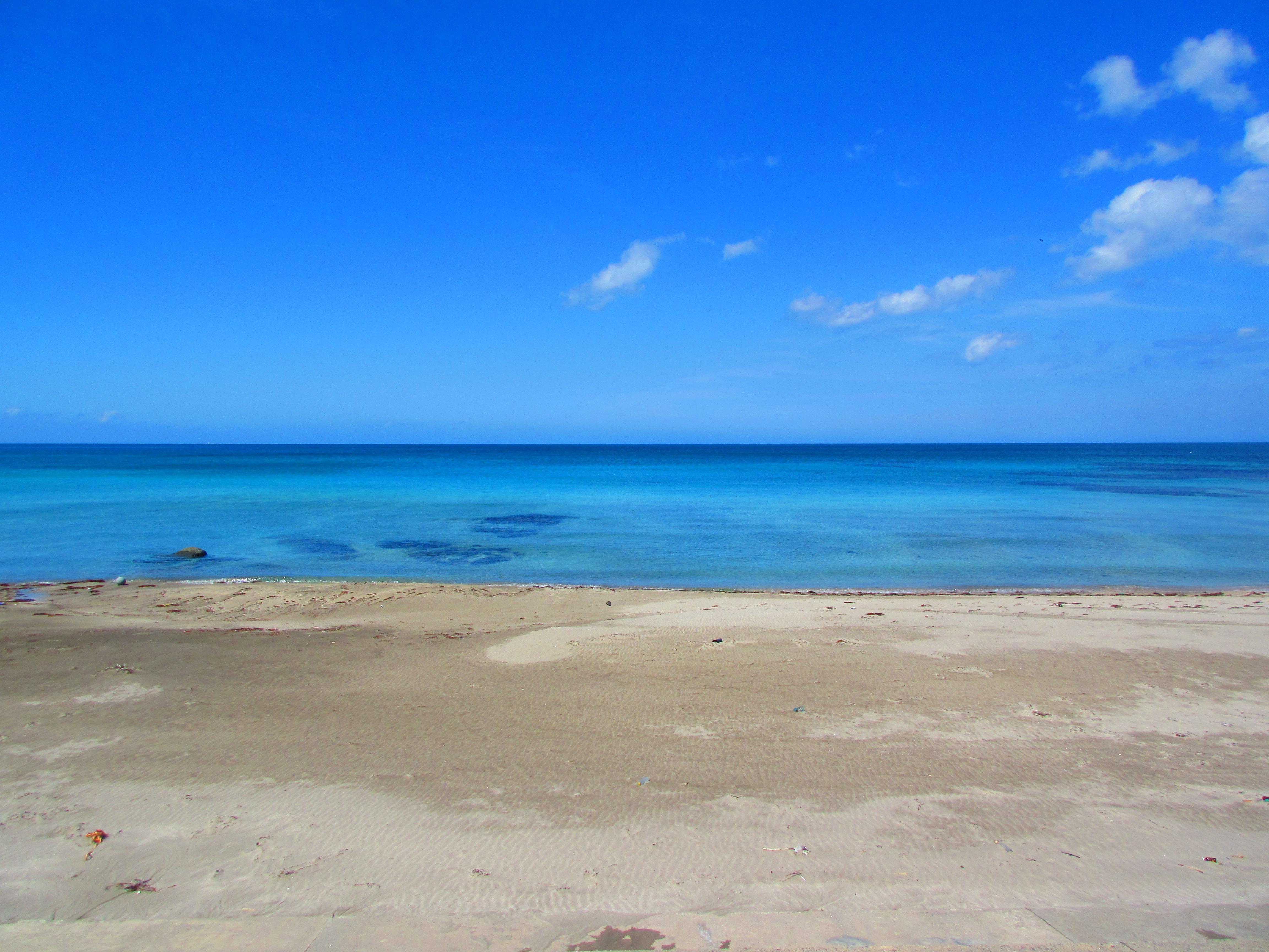 ガンド狙いで魚突きに行ったら5月の能登の海は夏になり始めていた。