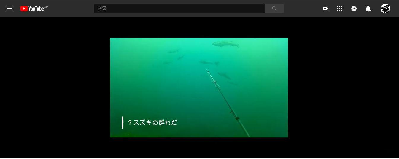 【能登で魚突き】アクションカメラを着けて魚突きをしてみた