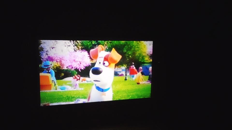 スクリーンに映る映画